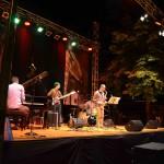 Live @ Fara Music Festival web